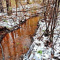 Stream In The Winter Forest by James Potts