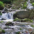 A Stream In Wicklow # 4 by Marcus Dagan