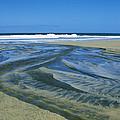 Stream On Beach by Bernard  Barcos