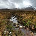 Stream On Rannoch Moor  by Gary Eason