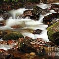 Stream Running Over Rocks by Deborah Benbrook