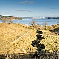 Stream To Kielder Water by David Head
