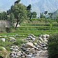 Stream Trees House And Mountains Swat Valley Pakistan by Imran Ahmed