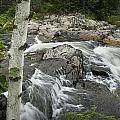 Stream With Waterfall In Vermont by Randall Nyhof