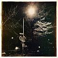 Street Light by H James Hoff