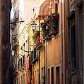 Street Scene In Italy by Carla Parris