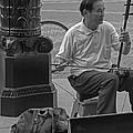 Street Strings by Yuri Levchenko