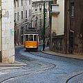 Streetcar by Luis Esteves