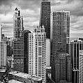 Streeterville From Above Black And White by Adam Romanowicz