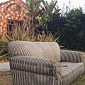 Striped Couch I by Robert Mollett