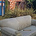 Striped Couch II by Robert Mollett