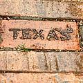 Stroll Down Texas Lane by Terry Fleckney