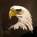 Stuarts Eagle by Joseph Hawkins