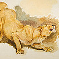 Study For Daniel In The Lions Den by Briton Riviere