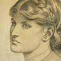 Study Of A Head For The Bower Meadow by Dante Charles Gabriel Rossetti