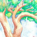 Study Of A Tree by Angela Bingham