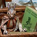 Stuffed Rabbit And Uncle Wiggly Book by Amy Cicconi
