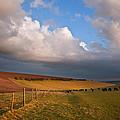 Stunning Scene Across Escarpment Countryside Landscape With Bea by Matthew Gibson