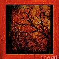 Stylized Cherry Tree With Old Textures And Border by Barbara Griffin