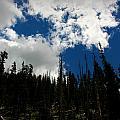 Subalpine Summer Skies by Aaron Burrows