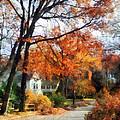 Suburban Street In Autumn by Susan Savad