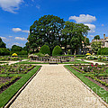 Sudeley Castle Gardens In The Cotswolds by Louise Heusinkveld