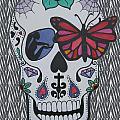 Sugar Candy Skull Zebra by Karen Larter