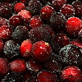 Sugared Cranberries by Joseph Skompski