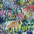Sumac Spectacular by Barbara Jewell