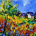 Summer 673180 by Pol Ledent