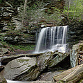 Summer At B Reynolds Falls by Gene Walls