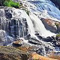 Summer At The Falls by Elvis Vaughn