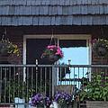 Summer Balcony by Donald S Hall