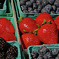 Summer Berries by Jean Booth