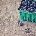 Summer Blueberries by Bethany Helzer