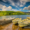 Summer Boating by Adrian Evans
