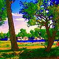 Summer Boats Moored Along Tree Lined Lachine Canal Quebec Landscapes  Montreal Art Carole Spandau by Carole Spandau
