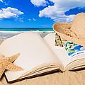 Summer Book by Amanda Elwell