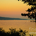Summer Evening On Cayuga Lake by Brad Marzolf Photography