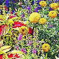 Summer Flower Garden Poster Print by A Gurmankin