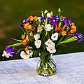 Summer Flowers Featured 3 by Alexander Senin