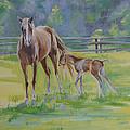Summer Foal by Elena Broach