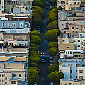 Summer Green On Lombard Street by Scott Campbell