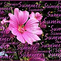 Summer Greetings by Joan-Violet Stretch