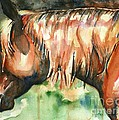 Horse Painting In Watercolor Summer Horse by Maria's Watercolor