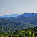 Summer In The Smokies by Cricket Hackmann