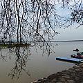 Summer Lake by Soumen Chattopadhyay