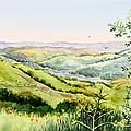 Summer Landscape Inspiration Point Orinda California by Irina Sztukowski