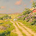 Summer Landscape by Mountain Dreams