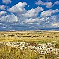 Summer Landscape Of Pag Island by Brch Photography